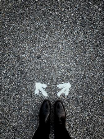 Decision on which way to go
